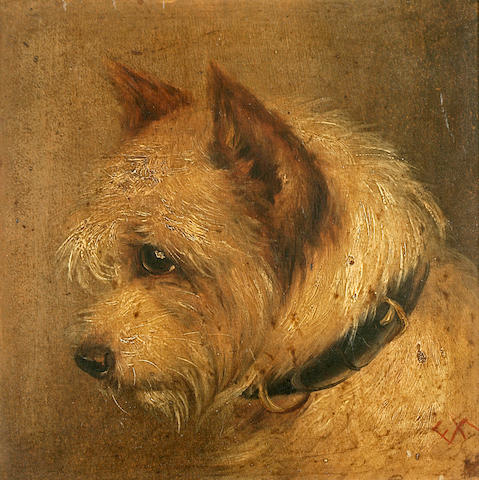 Edward Aistrop (British, 19th century) The Rough Coated Terrier (after Geo Armfield) 9 x 9 1/4 in. (22.8 x 23.5 cm.)