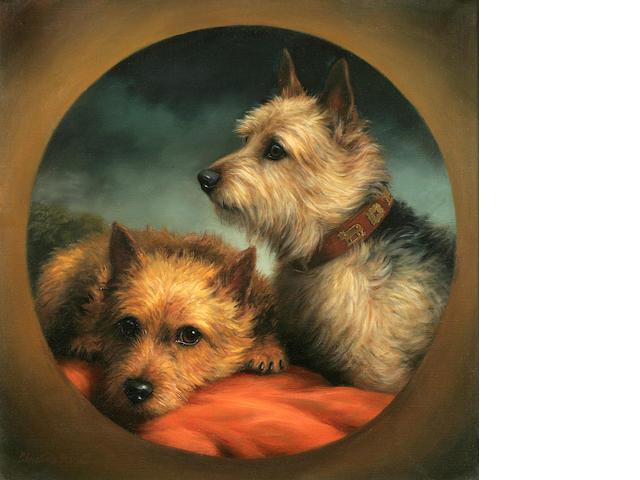 Christine Merrill (American, 20th century) Norwich Terriers 16 x 16 in. (40.6 x 40.6 cm.)