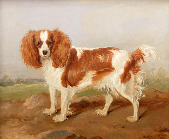 Martin Theodore Ward (British, 1799-1874) A brown and white spaniel in a landscape 22 x 25 in. (56 x 63.5 cm.)