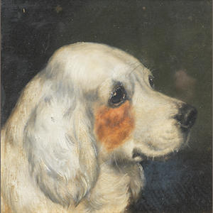 Edward Aistrop (British, 19th century) A portrait of a Clumber Spaniel 8 1/2 x 8 1/2in. (21.5 x 21.5cm.)