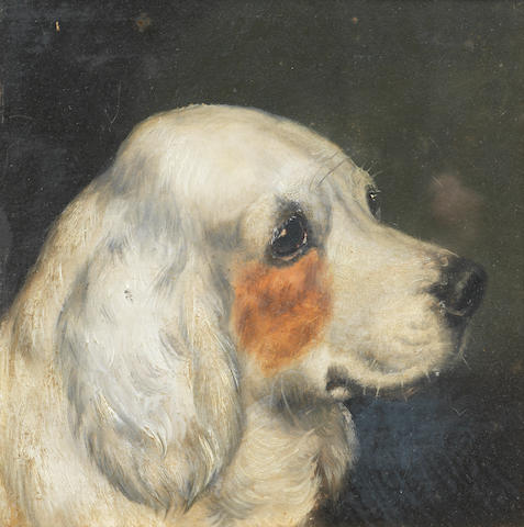 Edward Aistrop (British, 19th century) Portrait of a Clumber Spaniel 8 1/2 x 8 1/2 in. (21.5 x 21.5 cm.)