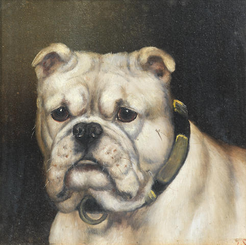 Edward Aistrop (British, 19th century) A portrait of a Bulldog 8 1/2 x 8 1/2 in. (21.5 x 21.5 cm.)