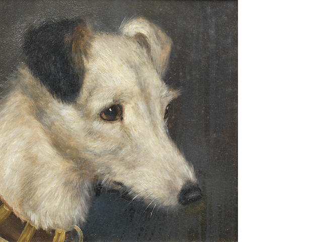 Edward Aistrop (British, 19th century) A portrait of a Fox Terrier 8 1/2 x 81/2 in. (21.5 x 21.5 cm.)