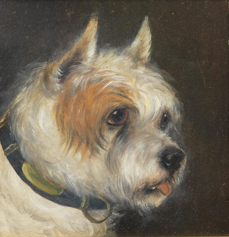 Edward Aistrop (British, 19th century) A portrait of a Terrier 8 1/2 x 81/2 in. (21.5 x 21.5 cm.)
