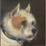 Edward Aistrop (British, 19th century) A portrait of a Terrier 8 1/2 x 81/2in. (21.5 x 21.5cm.)