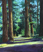 Tree-lined Road; Winter Scene with Trees and a Creek; Scene in the Redwoods; A Redwood Grove (4)