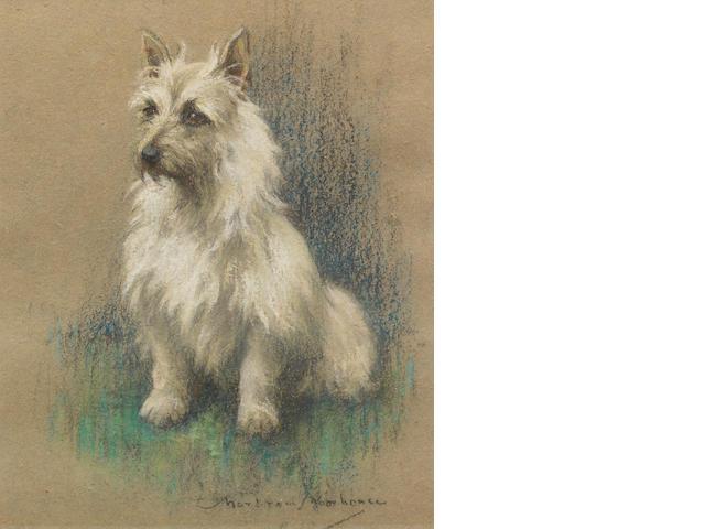 Marjorie Cox (British, 1915-2003) Basil 20 1/4 x 16 in. (51.5 x 40.5 cm.)