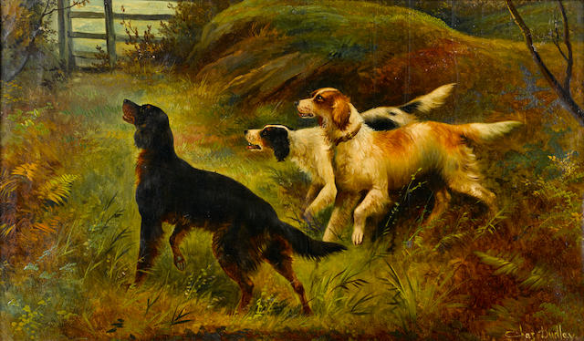 Charles Dudley (British, 19th/20th century) Three setters on the scent 16 1/4 x 27 1/2 in. (41 x 70 cm.)