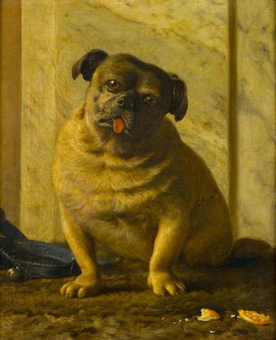 John Bates Bedford (British, born 1823) Tauro, a seated Pug 19 x 15 1/2 in. (48 x 39 cm.)