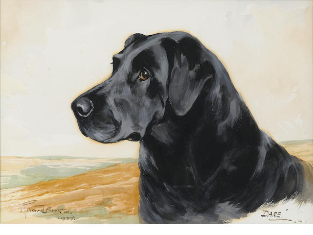 Reuben Ward Binks (British, 1880-1950) Dare, a black Labrador 10 x 14 in. (25 x 36 cm.)