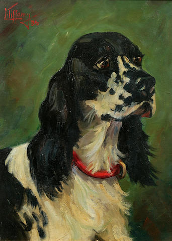 Lillian Tiffany (American, born 1900) Head of an English Cocker Spaniel 12 x 16 in. (30.5 x 40.7 cm.)