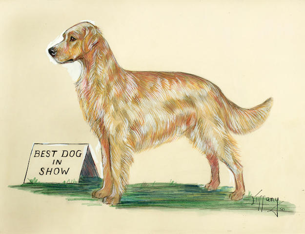Lillian Tiffany (American, born 1900) Ch. Prince Alexander, Best Dog In Show sight 14 3/4 x 16 1/2 in.