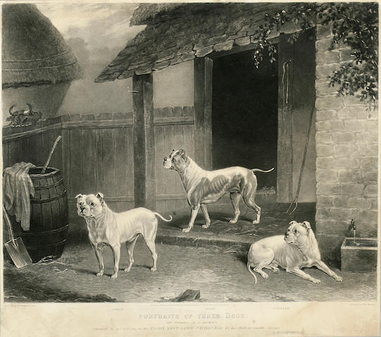 After Dean Wolstenholme the Younger (British, 1798-1882) Portraits of Three Dogs: Billy, Rose, Tumbler,  1834, image 13 x 16 1/4 in. (33.0 x 41.3 cm.) <BR />image 9 x 11 1/4 in. (22.8 x 28.5 cm.)