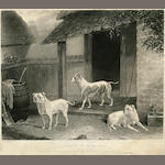 After Charles Dean Westenholme Portraits of Three Dogs: Billy, Rose, Tumbler, DATE? image 13 x 16 1/4 in. (33.0 x 41.3 cm.) <BR />image 9 x 11 1/4 in. (22.8 x 28.5 cm.)