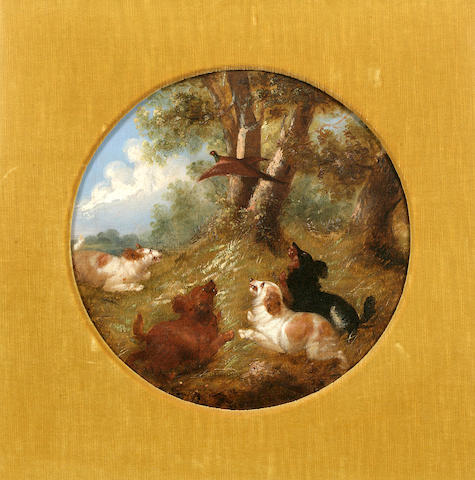 Circle of George Armfield (British, 1810-1893) Terriers working a hole, Spaniels putting up pheasant: Two each 14 x 14 in. (35.6 x 35.6 cm.)