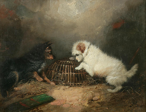 George Armfield (British, 1810-1893) Terriers with a caged rat 7 1/8 x 9 1/8 in. (18.1 x 23.2 cm.)