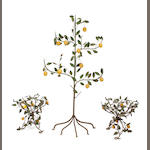 An assembled group of three Continental paint decorated wrought iron models of lemon trees