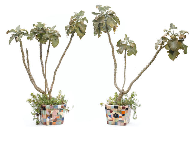 A pair of Catalina mosaic tile jardinieres with plants