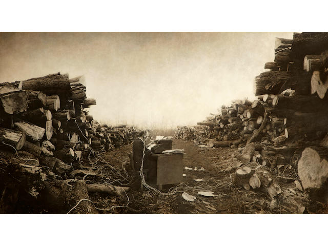 Robert ParkeHarrison (American, born 1968); Tree Stories 2000 gelatin silver print with acrylic gels and varnish ed. 1/4;