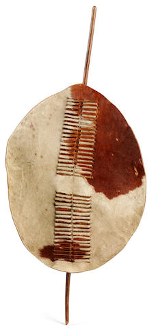 Zulu Shield, South African height 55 3/4in (141.6cm)