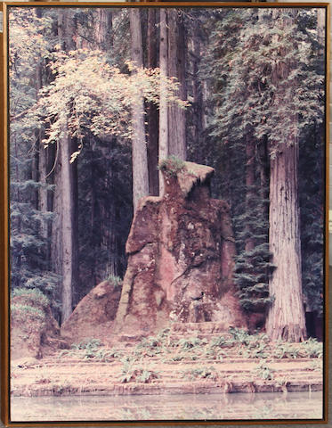 A framed photograph of Bohemian Grove, California signed Stephen B. Herrick