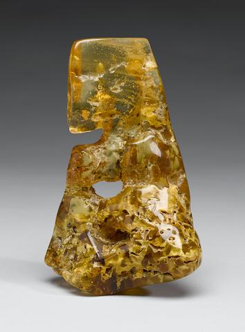 Columbian Amber Termite Nest