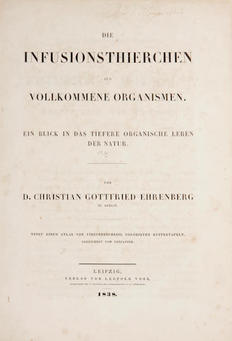 EHRENBERG, CHRISTIAN GOTTFRIED. Die Infusionsthierchen als vollkommene Organismen. [with] Atlas. Leipzig: Leopold Voss, 1838. 2 vols in 1. Upper cover and spine lacking.