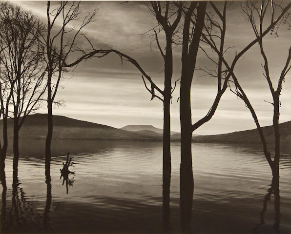Brett Weston, Lake Patzcuaro, Mexico, 1973;