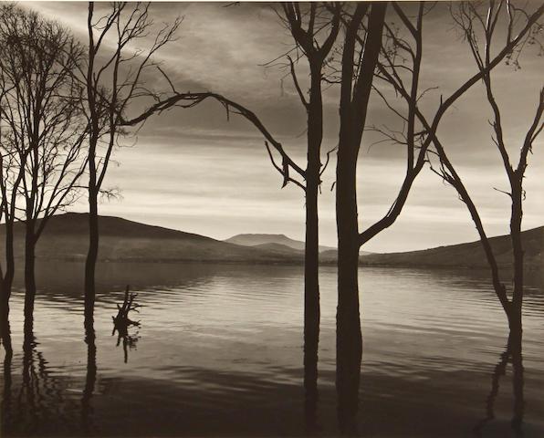 Brett Weston, Lake Patzcuaro, Mexico, 1973;
