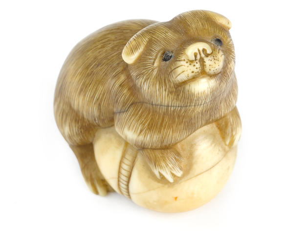 Ivory netsuke of a puppy by Ransai