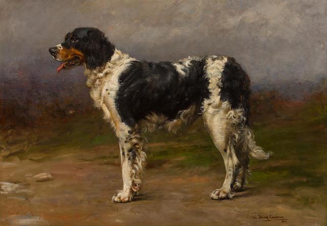 William Frank Calderon (British, 1865-1943) Portrait of a Gun Dog 22 3/4 x 32in. (57.8 x 81.3cm.)