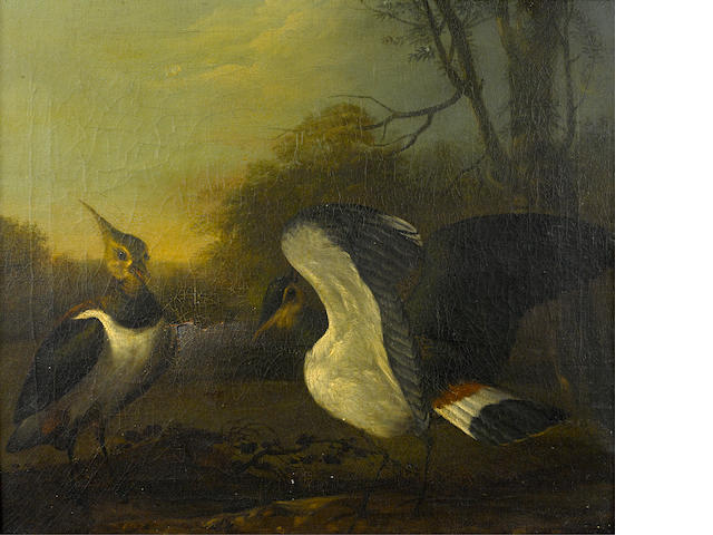 English School, 18th Century Two lapwings in a wooded landscape 19 1/2 x 22 1/4in (49.5 x 56.5cm)