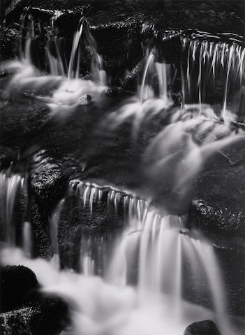 Ansel Adams (1902-1984); Fern Spring, Dusk, Yosemite Valley;