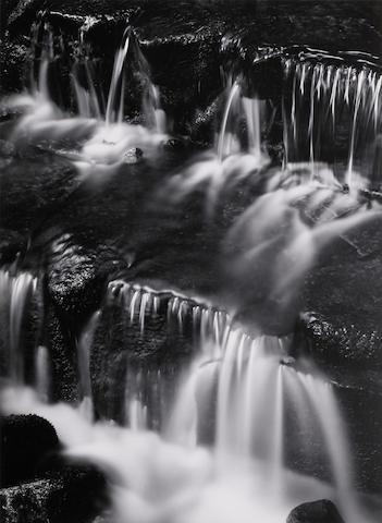 Ansel Adams (1902-1984); Fern Spring, Dusk, Yosemite Valley;