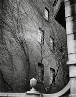 Brett Weston (1911-1993); New York;