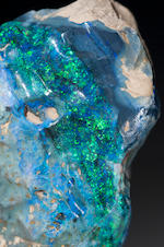 "The Largest Recorded Fine Black Opal Nodule—""Halley's Comet""—Listed in the Guinness Book of World Records"