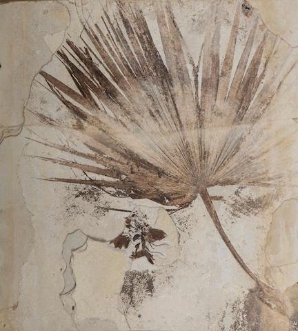 Palm Frond with Bird – A Singular Presentation