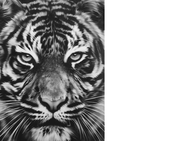 Robert Longo (born 1955) Untitled (Leo), 2013 45 x 33 1/2in. (114.3 x 85.1cm)