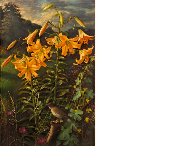 Raymond Booth (British, born 1929) Lilium 'Thunderbolt' sight, 32 1/2 x 20 3/4in