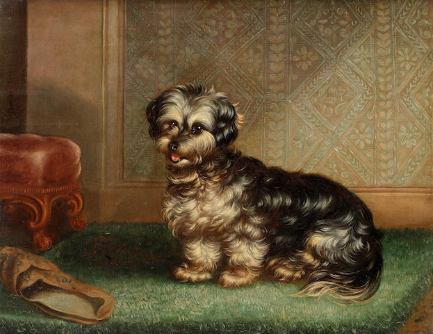 English School, 19th century Gas, portrait of a Terrier 14 1/4 x 18in. (36 x 46cm.)