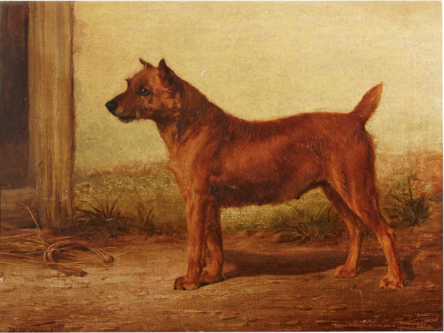William Henry Hamilton Trood (British, 1860-1899) Irish Terrier 14 x 18 1/4in. (35.6 x 46.3cm.)