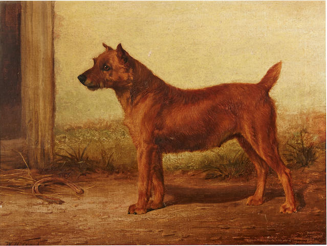 William Henry Hamilton Trood (British, 1860-1899) Irish Terrier 14 x 18 1/4in