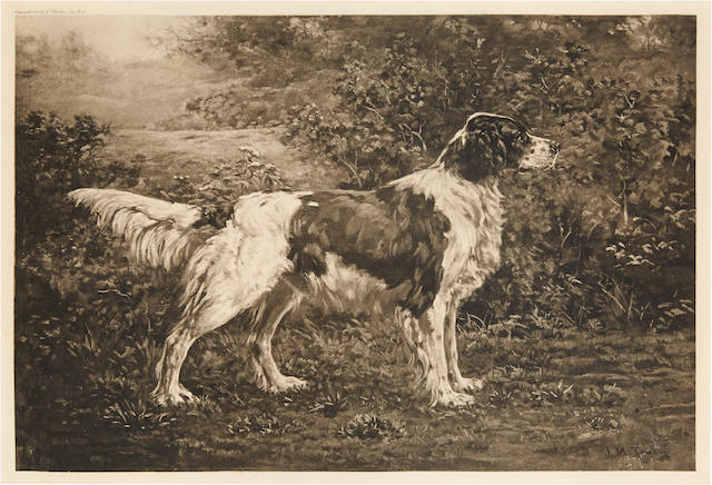 John Martin Tracy (American, 1843-1893) English Setter in a landscape image 14 x 20in. (35.6 x 50.8cm.)