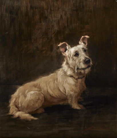 Maud Earl (British, 1863-1943) Skye Terrier 26 x 22in. (66.1 x 55.9cm.)