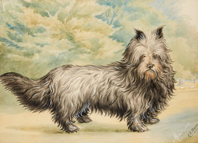 A. E. Murray (British, 19th century) A portrait of Moses, a Skye Terrier 14 3/4 x 19 3/4in. (37.5 x 50.2cm.) sight