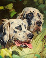 Henry (Hy) Hintermeister (American, 1897-1972) English Setters 14 x 18in. (35.6 x 45.8cm.)