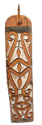 Asmat Shield, probably Eilanden River area, West Papua Province (Irian Jaya)