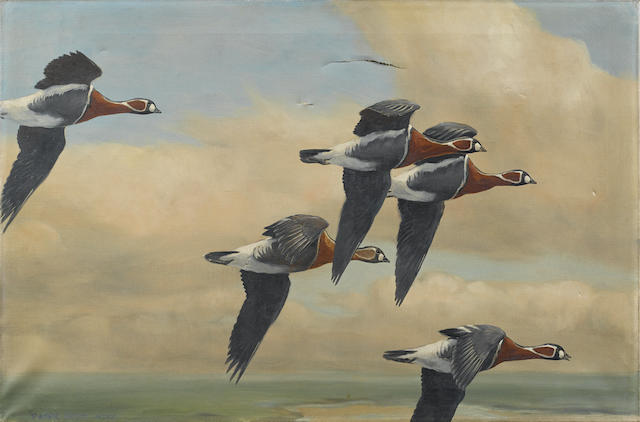 SCOTT, PETER MARKHAM. 1909-1989.  Original oil on canvas, Five Red-Breasted Geese Flying,