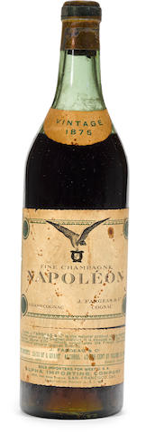 Fine Champagne Napoleon Grand Cognac 1875 (1)