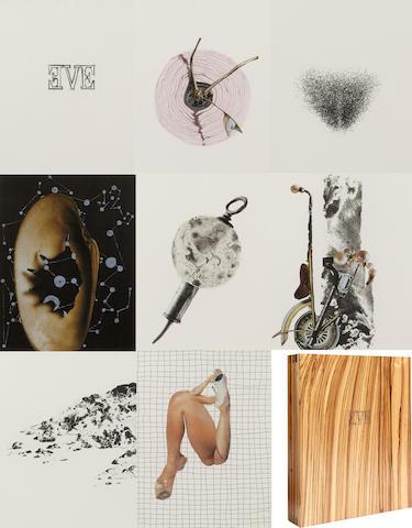 WANGECHI MUTU (b. 1972) Eve, 2006